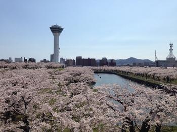 函館6.jpg
